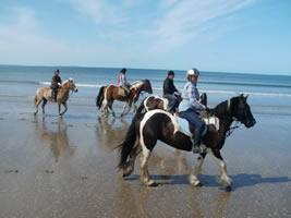 Horse riders walking along sea shore