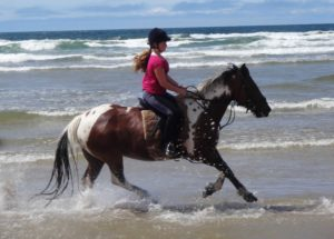 cantering_in_sea