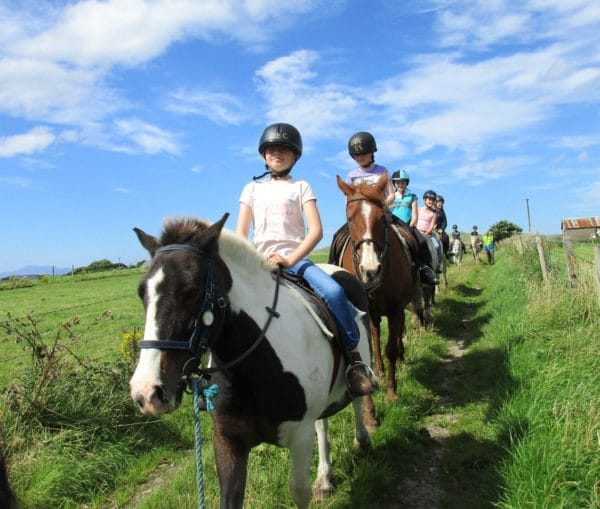 Pony ride along country lane