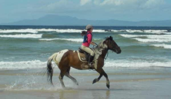Cantering in the Wild Atlantic