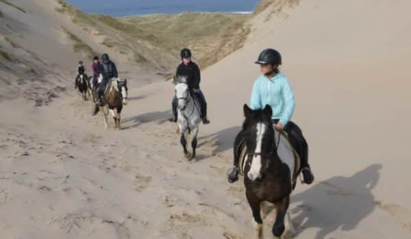 Horse riding in sand dunes