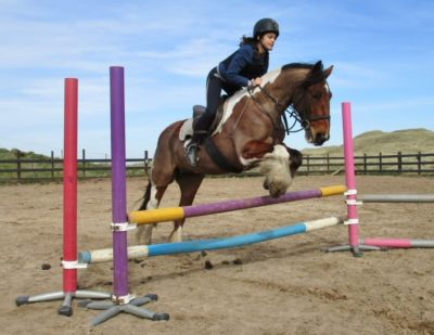Jumping Lesson in Outdoor Arena