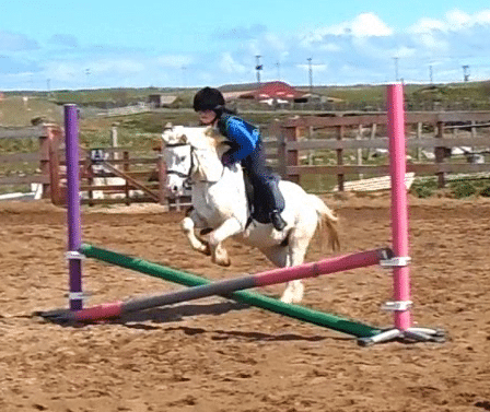 Pony jumping small cross pole
