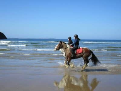 Canter on Tullan Strand