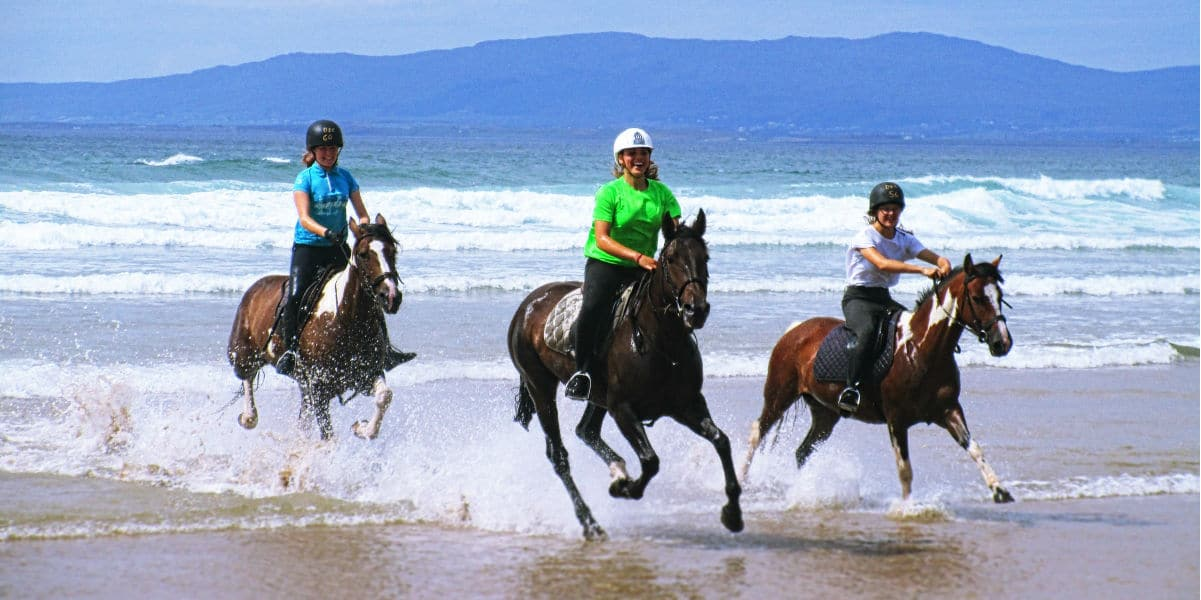 Horse Riding Donegal Quality Horse Riding Experiences